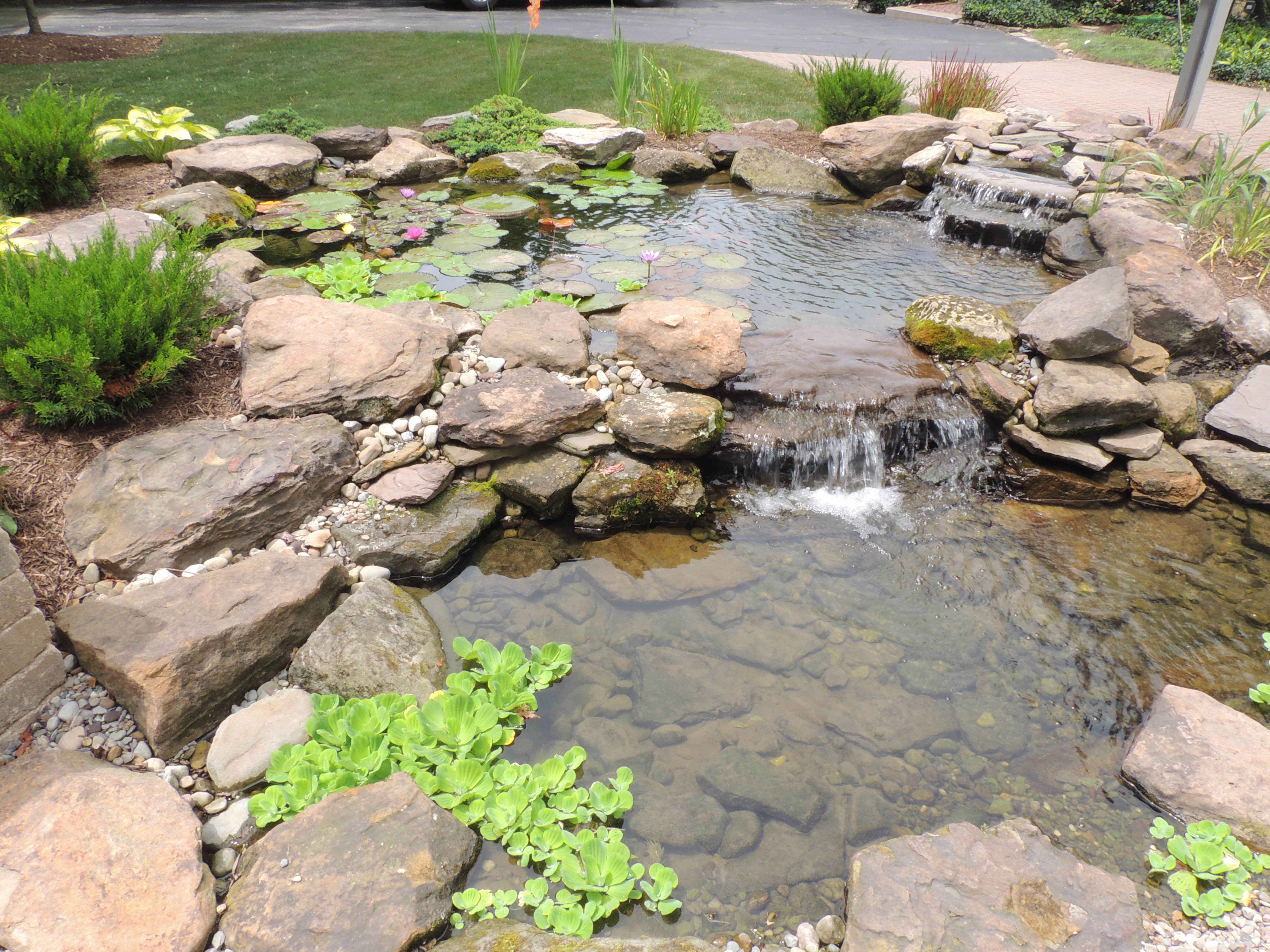 Ponds and water features eastside landscaping for Ponds and water features